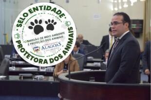 Selo reconhecerá ONGs que atuem na proteção dos animais