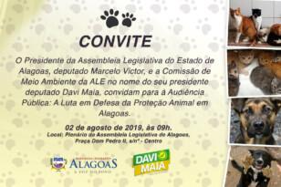 Comissão da ALE realiza audiência pública sobre a causa animal