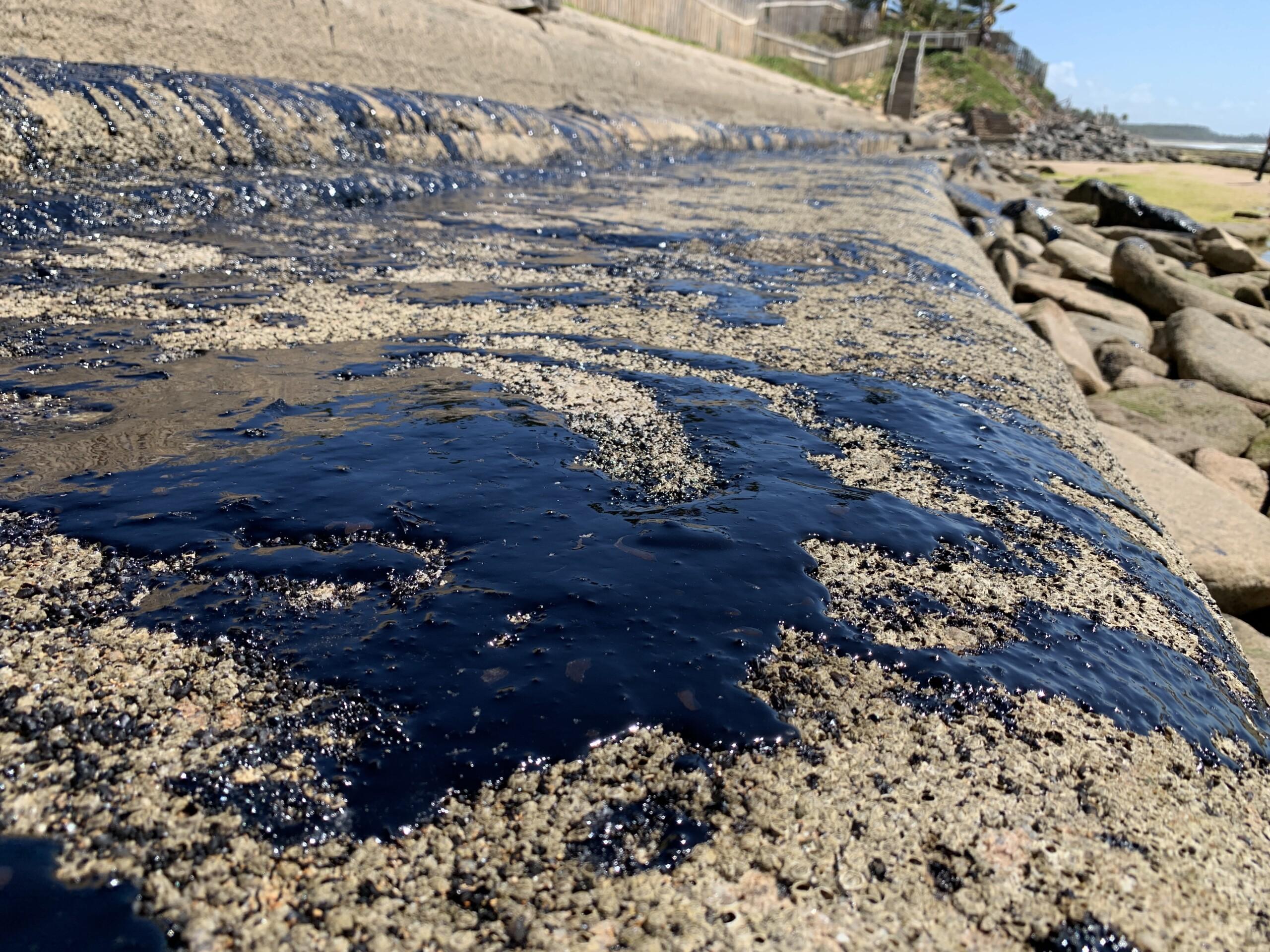 Audiência pública debate manchas de óleo em praias