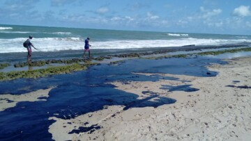 Assembleia discute derramamento de óleo nas praias do Nordeste